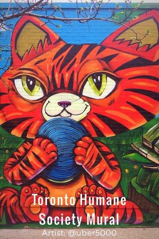 Toronto Humane Society Mural Artist: @uber5000