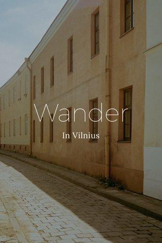 Wander In Vilnius