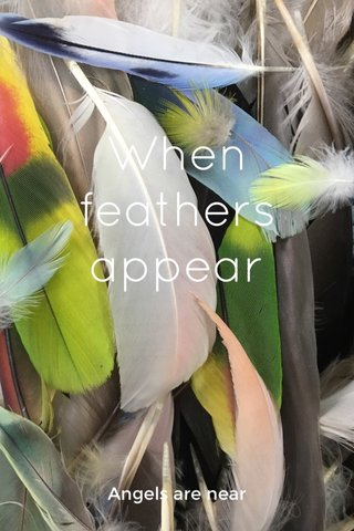 When feathers appear Angels are near
