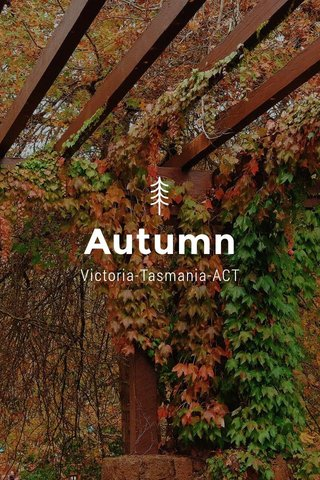 Autumn Victoria-Tasmania-ACT