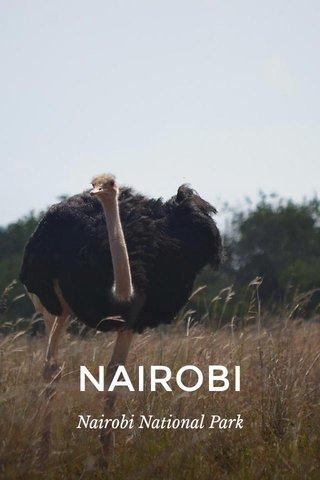 NAIROBI Nairobi National Park