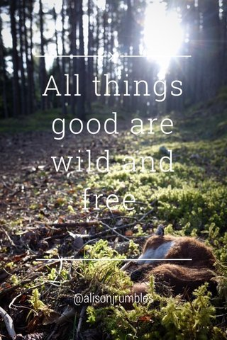 All things good are wild and free. @alisonjrumbles