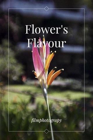 Flower's Flavour filmphotograpy