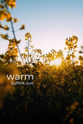 warm Suffolk sun