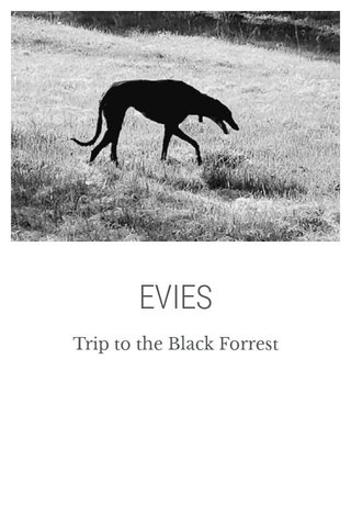 EVIES