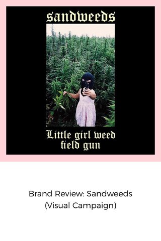 Brand Review: Sandweeds (Visual Campaign)