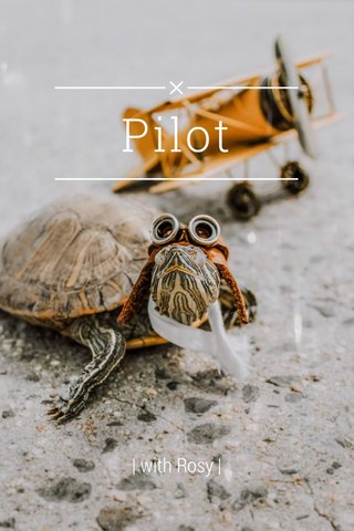 Pilot | with Rosy |