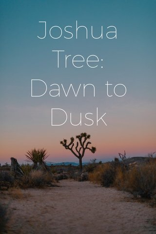 Joshua Tree: Dawn to Dusk