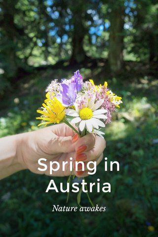 Spring in Austria Nature awakes