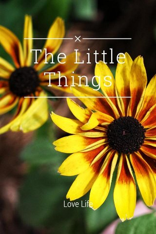 The Little Things Love Life