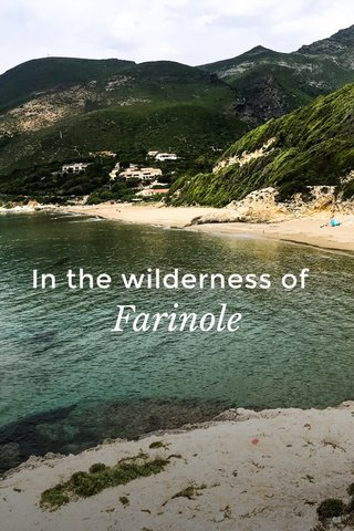 In the wilderness of Farinole