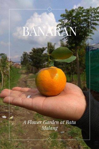 BANARAN A Flower Garden at Batu Malang