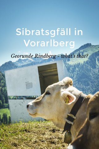 Sibratsgfäll in Vorarlberg Georunde Rindberg - what's that?