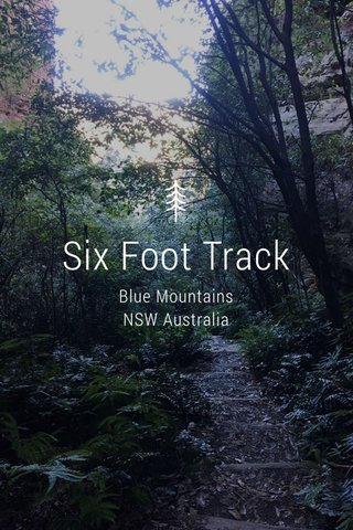 Six Foot Track Blue Mountains NSW Australia