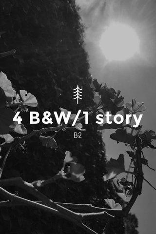 4 B&W/1 story B2