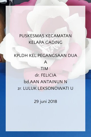 PUSKESMAS KECAMATAN KELAPA GADING KPLDH KEL.PEGANGSAAN DUA A TIM : dr. FELICIA bd.AAN ANTAINUN N zr. LULUK LEKSONOWATI U 29 juni 2018