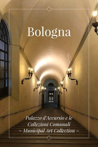 Bologna Palazzo d'Accursio e le Collezioni Comunali ~ Municipal Art Collection ~