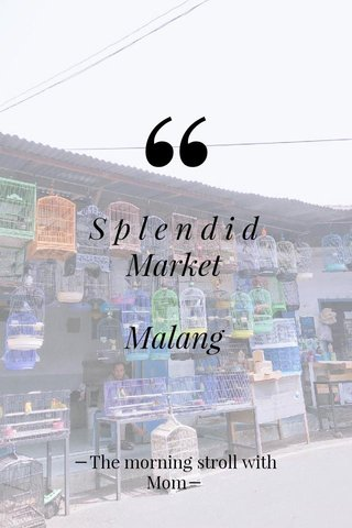 S p l e n d i d Market Malang ーThe morning stroll with Momー