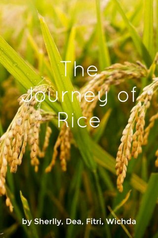 The Journey of Rice by Sherlly, Dea, Fitri, Wichda