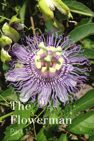 The Flowerman Part 1