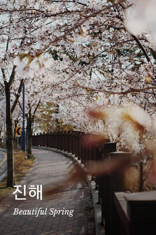 진해 Beautiful Spring
