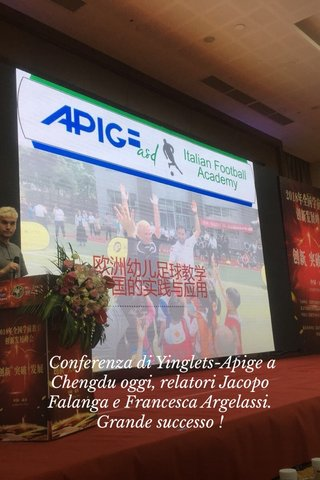 Conferenza di Yinglets-Apige a Chengdu oggi, relatori Jacopo Falanga e Francesca Argelassi. Grande successo !