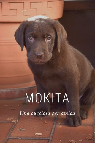 MOKITA Una cucciola per amica