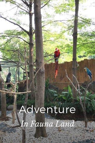 Adventure In Fauna Land