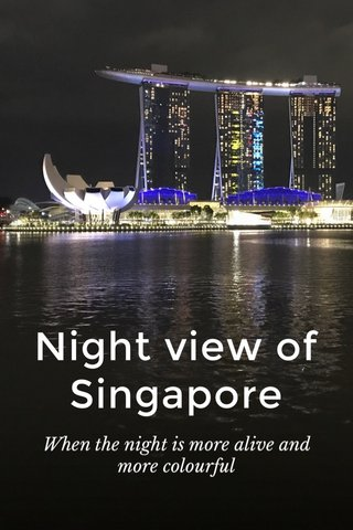 Night view of Singapore When the night is more alive and more colourful