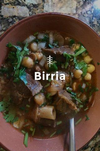 Birria