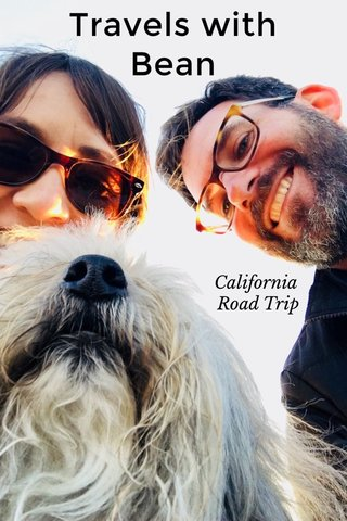 Travels with Bean California Road Trip