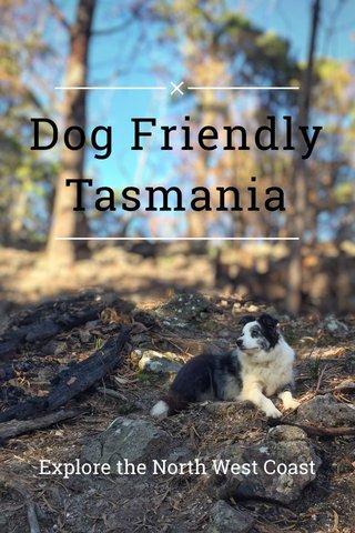 Dog Friendly Tasmania Explore the North West Coast