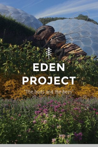 """EDEN PROJECT """"The buds and the bees"""""""