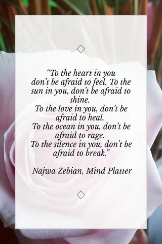 """""""To the heart in you don't be afraid to feel. To the sun in you, don't be afraid to shine. To the love in you, don't be afraid to heal. To the ocean in you, don't be afraid to rage. To the silence in you, don't be afraid to break."""" Najwa Zebian, Mind Platter"""