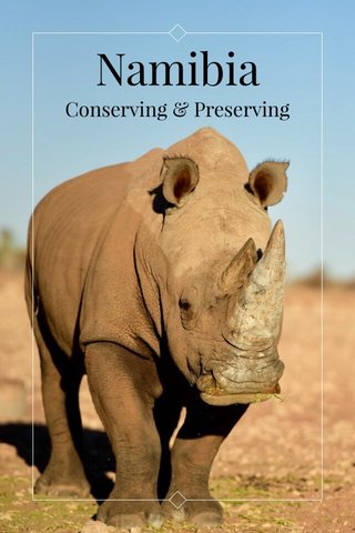 Namibia Conserving & Preserving