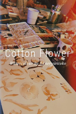 Cotton Flower Watercolour by flanerywitoko