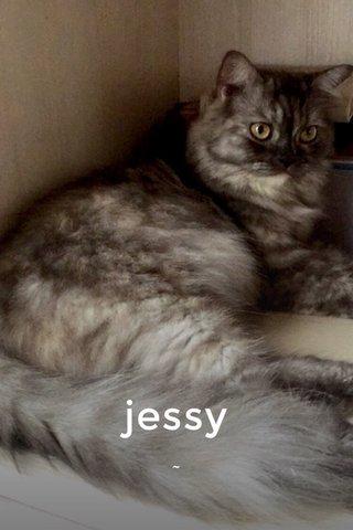 jessy ~