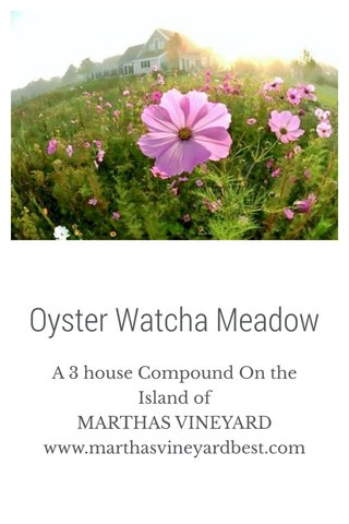 Oyster Watcha Meadow