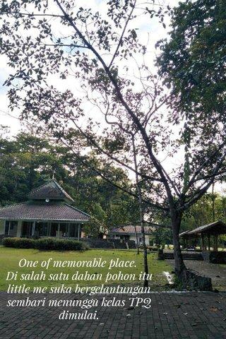One of memorable place. Di salah satu dahan pohon itu little me suka bergelantungan sembari menunggu kelas TPQ dimulai.