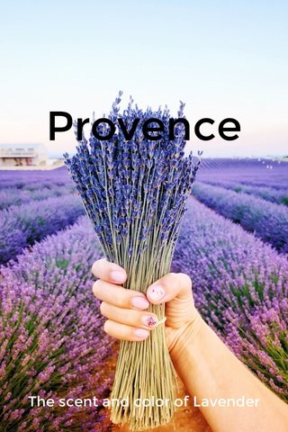 Provence The scent and color of Lavender