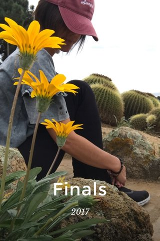 Finals 2017