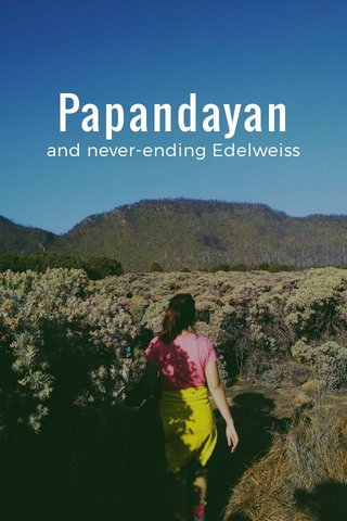 Papandayan and never-ending Edelweiss
