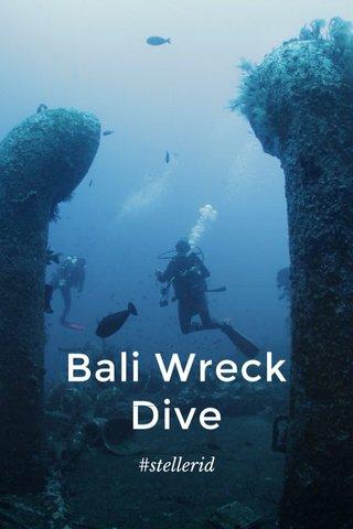 Bali Wreck Dive #stellerid