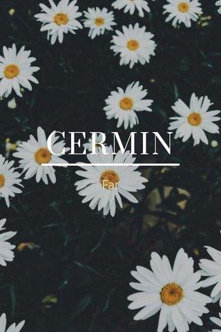 CERMIN Far