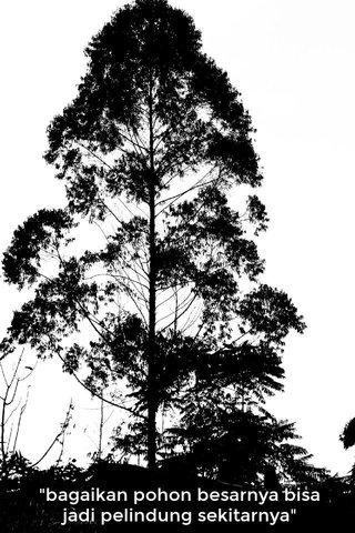 """""""bagaikan pohon besarnya bisa jadi pelindung sekitarnya"""""""