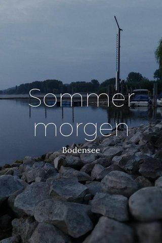 Sommermorgen Bodensee