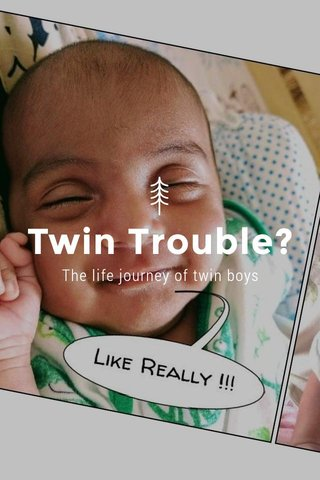 Twin Trouble? The life journey of twin boys