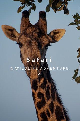 Safari A WILDLIFE ADVENTURE