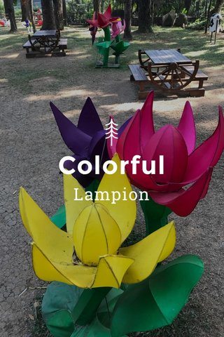 Colorful Lampion