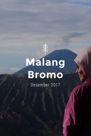 Malang Bromo Desember 2017